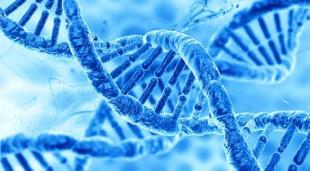 geneticke_testy_interklinik